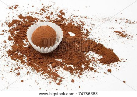 Chocolate truffle with scattered cocoa powder