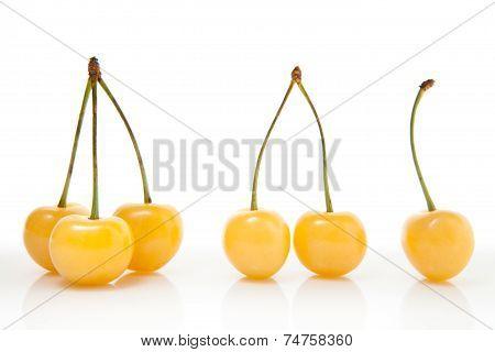 Yellow cherries - one two three