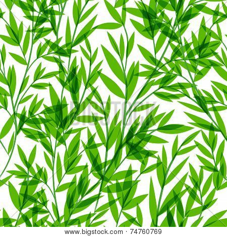 Vector Bamboo seamless pattern for your business