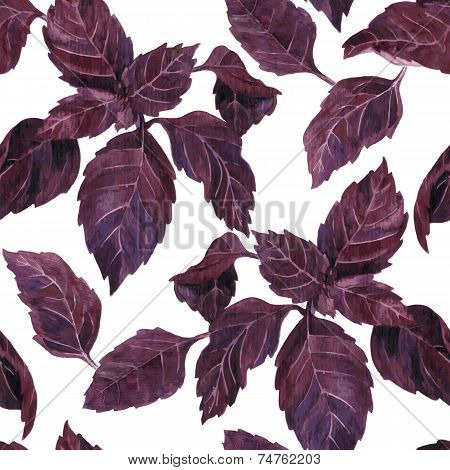 seamless pattern with leaves of basil