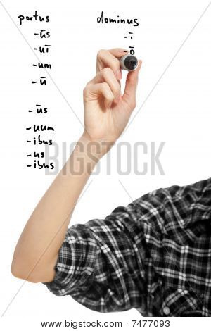 Hand Of A Student Girl Declinating Two Latin Words