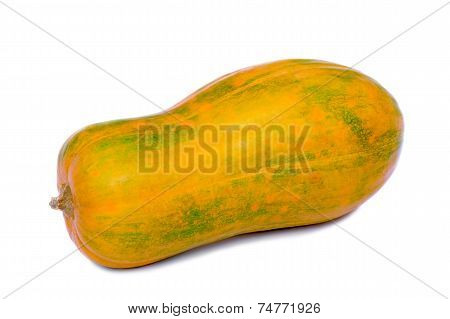Large Ripe Pumpkin On A White Background.