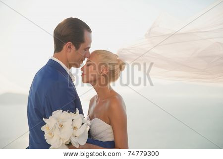 Young Elegant Wedding Couple