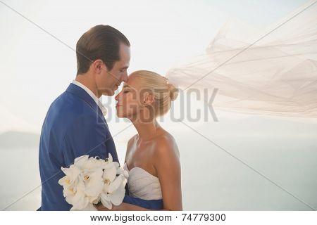 Young Elegant Wedding Couple