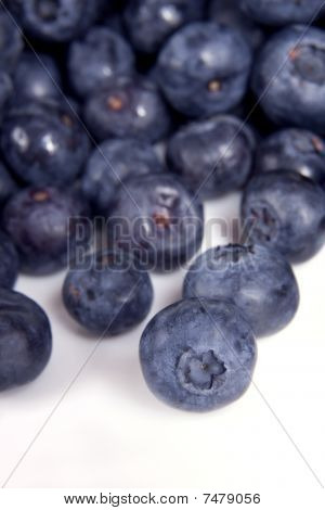 Blueberries, Vertical