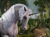 stock photo of bucking bronco  - A beautiful stag unicorn passes through a magical forest - JPG