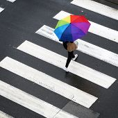stock photo of zebra crossing  - Woman crossing the zebra with umbrella -