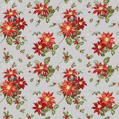 image of poinsettia  - Christmas Seamless Background  - JPG