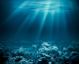 picture of under sea  - Sea deep or ocean underwater with coral reef as a background - JPG