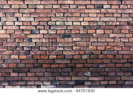 Old Brick Wall Damaged With Shadow