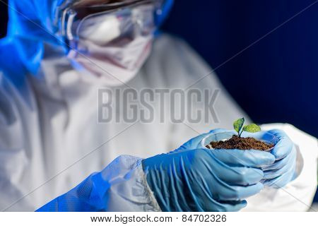 science, biology, ecology, research and people concept - close up of young scientist holding petri dish with plant and soil sample in bio laboratory