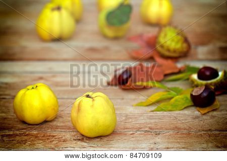 Organic quince (apple quince)