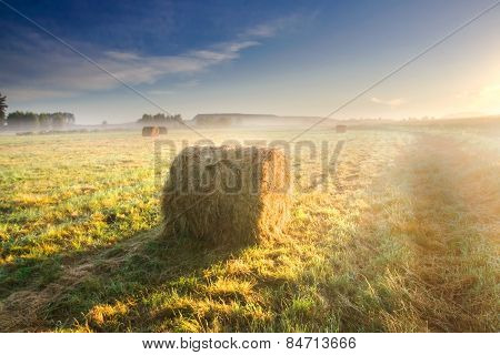 Bales Of Hay In Sunrise Light