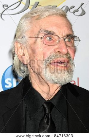 LOS ANGELES - FEB 22:  Martin Landau at the Night of 100 Stars Oscar Viewing Party at the Beverly Hilton Hotel on February 22, 2015 in Beverly Hills, CA
