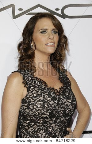LOS ANGELES - FEB 14: Amy Landecker at the Make-Up Artists & Hair Stylists Guild Awards at the Paramount Theater on February 14, 2015 in Los Angeles, CA