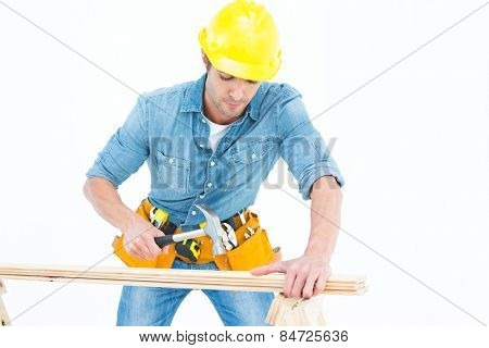 Male carpenter using hammer on wood over white background