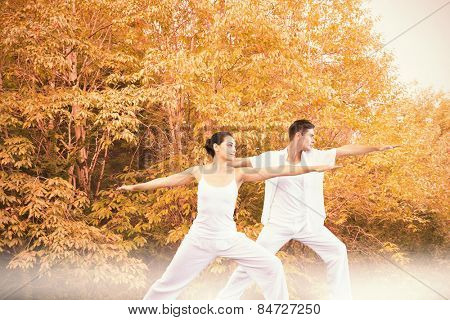 Peaceful couple in white doing yoga together in warrior position against peaceful autumn scene in forest