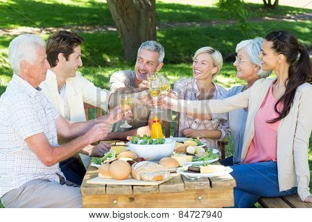 Happy family toasting in the park on a sunny day