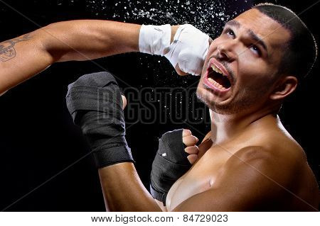Boxer Getting Knocked Out