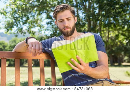 Young man reading on park bench on a summers day
