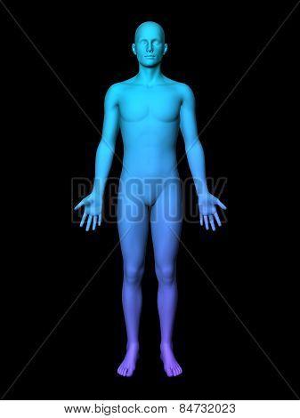 3D Male
