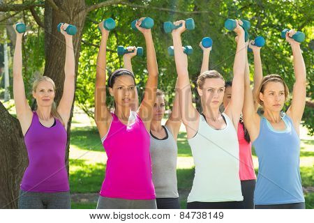 Fitness group lifting hand weights in park on a sunny day