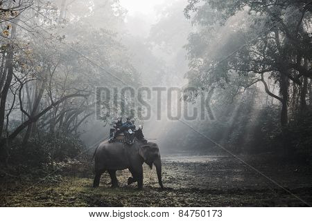 SAURAHA, NEPAL - CIRCA DECEMBER 2014: Tourists doing an elephant safari in Chitwan National Park.