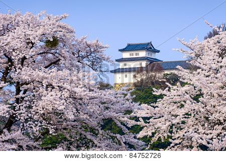 Hikone, Japan at Hikone Castle in the spring.