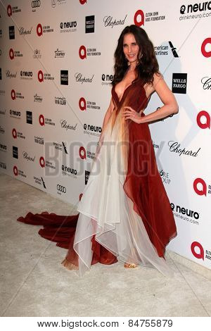 LOS ANGELES - FEB 22: andie macdowell  at the Elton John Oscar Party 2015 at the City Of West Hollywood Park on February 22, 2015 in West Hollywood, CA