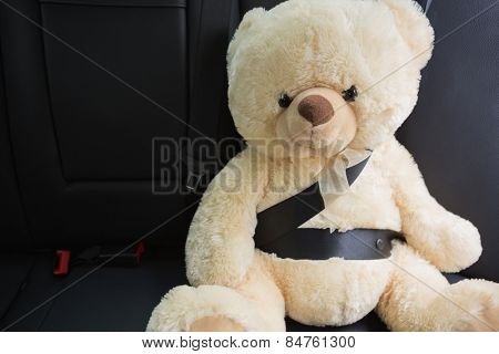 Teddy bear strapped in with seat belt in back seat of car
