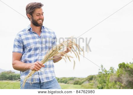 Happy man with his sheaf of wheat on a sunny day