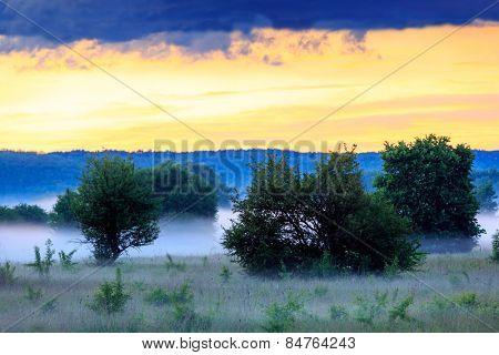 Early morning scene in steppe, Ukraine