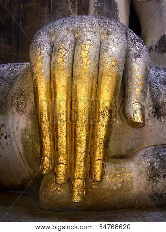 Buddha Hand Down