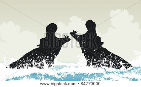 EPS8 editable vector illustration of two hippopotamuses fighting in water