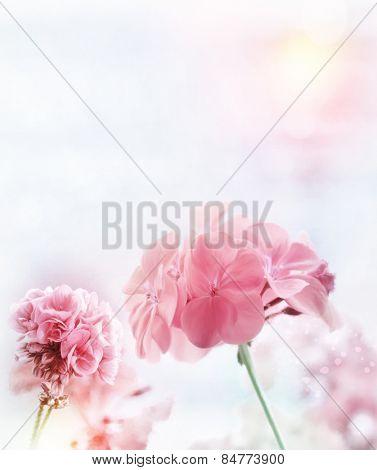 Digital Painting Of Pink Geranium
