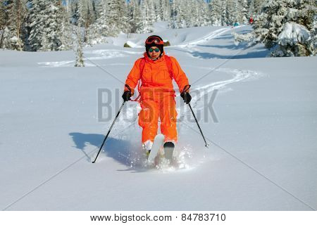 Skier have fun  in high mountains