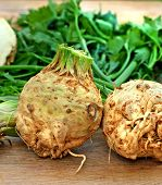 picture of celery  - Fresh organic elery  - JPG