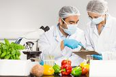 stock photo of scientist  - Food scientists using the microscope for research at the university - JPG