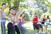 picture of tug-of-war  - Fitness group playing tug of war on a sunny day - JPG