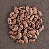 picture of pinto bean  - Top view of circle of pinto beans against brown vinyl background - JPG