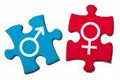 picture of gender  - Puzzle Showing Gender Symbol - JPG