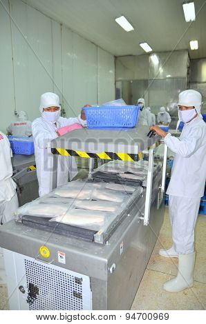 Can Tho, Vietnam - July 1, 2011: Workers Are Vacuum Packaging Of Pangasius Catfish In A Seafood Fact