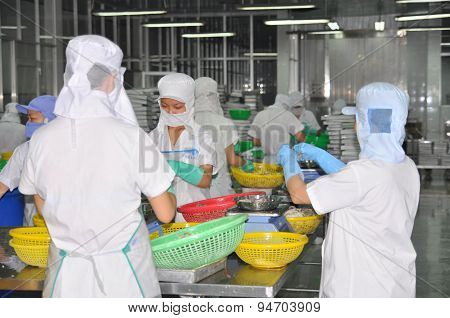 Nha Trang, Vietnam - March 5, 2012: Workers Are Selecting Octopus To Put To The Freezing Machine In