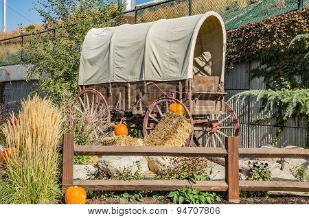 Covered Wagon With Pumpkins