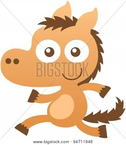 Cute baby horse smiling and running