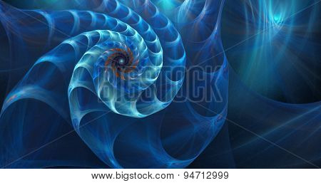 fractal shell on the sea