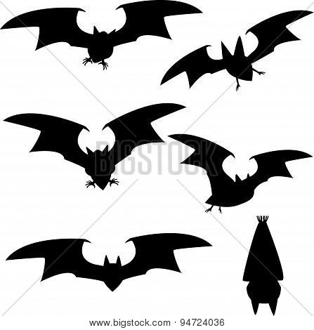 Set Of Silhouette Vampire Bat Flying