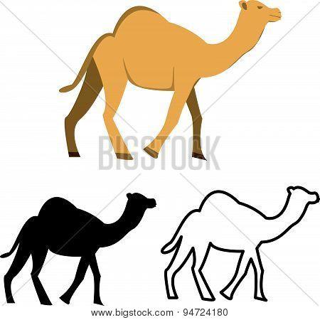 Set Of Flat Camel Icon