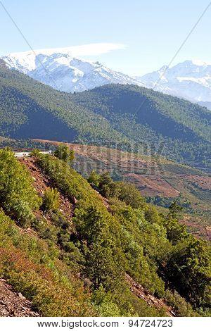 The Dades Valley Atlas Moroco