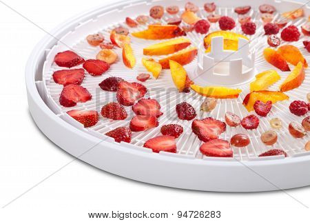 Slices Of Berries And Fruits On Dehydrator Tray